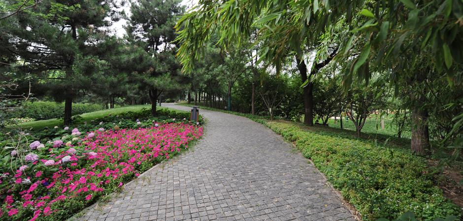 """寸土寸金的北京CBD中心,竟藏著一片""""綠野仙蹤"""",不去真的太可惜了!"""