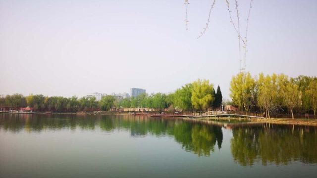 紅領巾公園春景美如畫