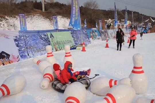 丰台区第四届欢乐冰雪季启动