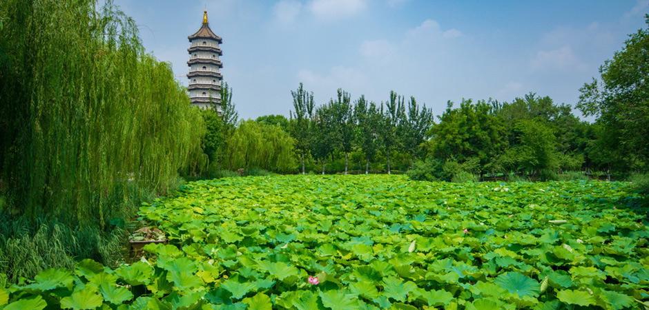 """北京周边竟藏着一座有着百年历史的""""江南园林?#20445;?#20851;键还免费"""