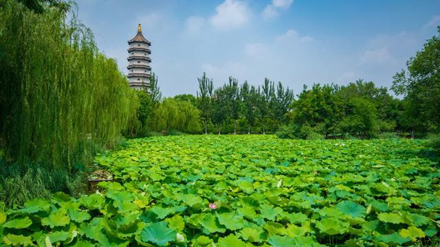 """北京周邊竟藏著一座有著百年歷史的""""江南園林"""",關鍵還免費"""
