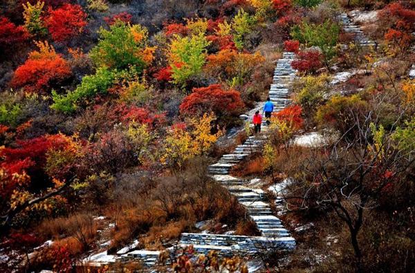 房山坡峰岭红叶节全攻略