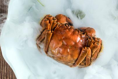 北京华尔道夫酒店紫金阁中餐厅推出金秋蟹宴:金叶秋实 食蟹正当时