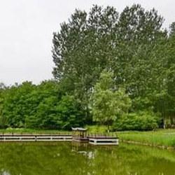 翠湖國家城市濕地公園