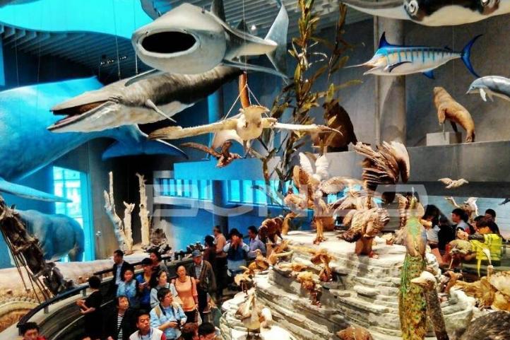自然博物馆将实行预约参观