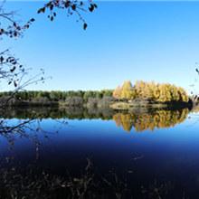 塞罕坝国家森林公园