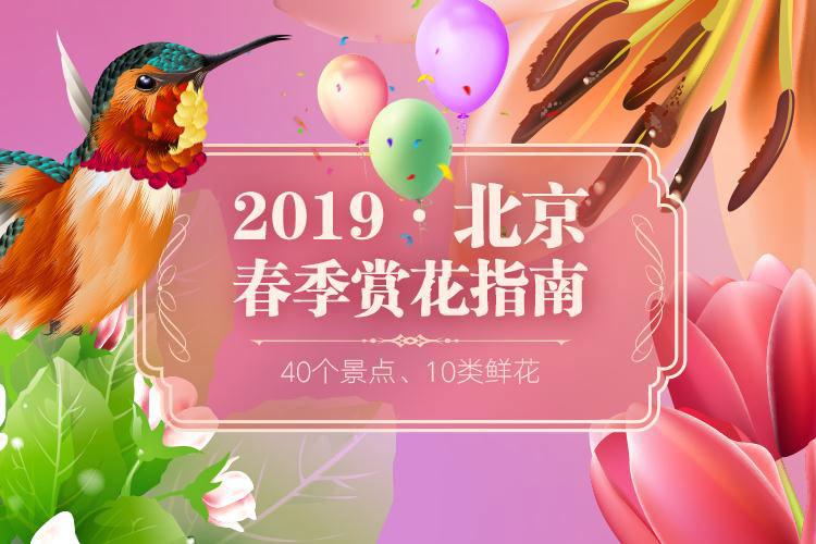 2019北京春季賞花指南