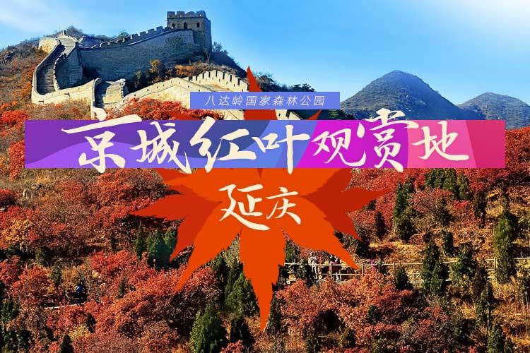 京城紅葉觀賞地:延慶