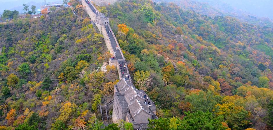超强福利!限时限量免费玩,仅限北京这两大人气景区!