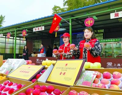 昌平蘋果文化節為市民添口福