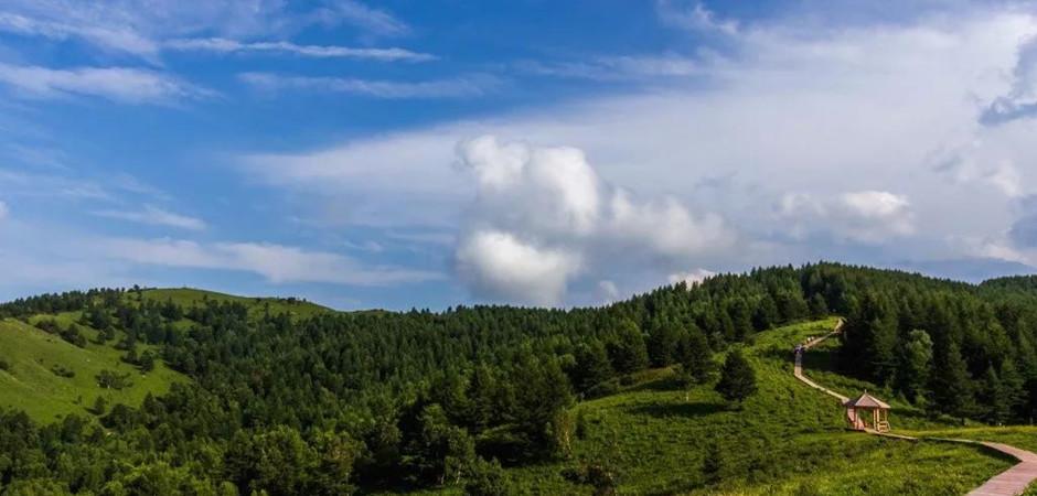 """北京周邊竟藏著一個""""高空中的綠寶石""""!空中草原、森林云?!G到讓人心醉~"""