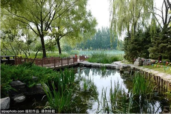 北京竟然还有这样的地方!虽被很多人遗忘,却依然如此静美...