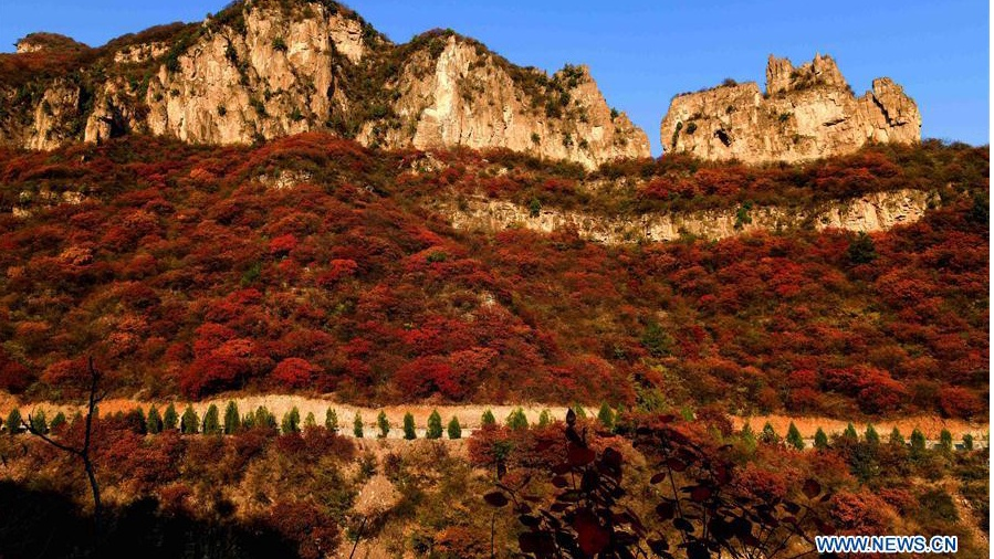Autumn scenery of scenic spot on eastern foot of Taihang Mountain