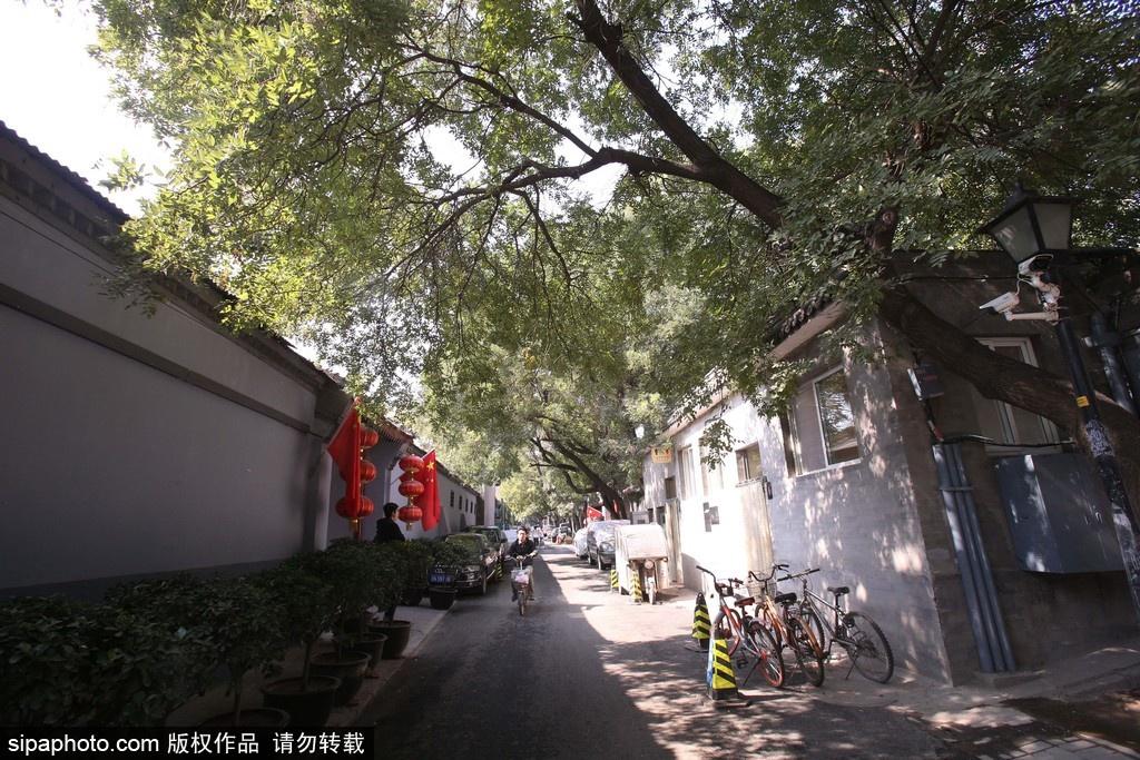 Tour de Hutongs à Beijing