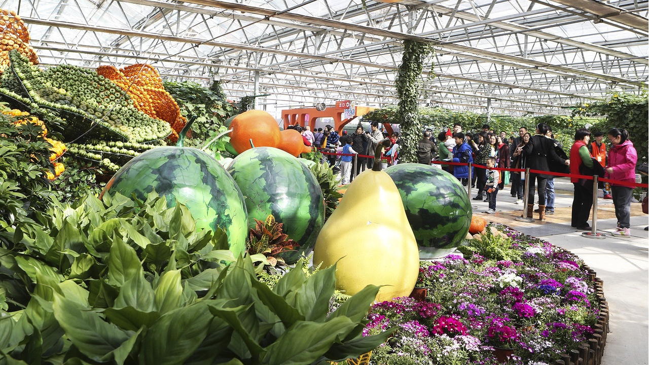 Annual Beijing Agriculture Carnival to Kick off