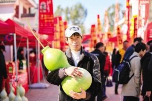 北辰區雙口鎮葫蘆文化節開幕 幾百件高品質葫蘆展品爭奇斗艷