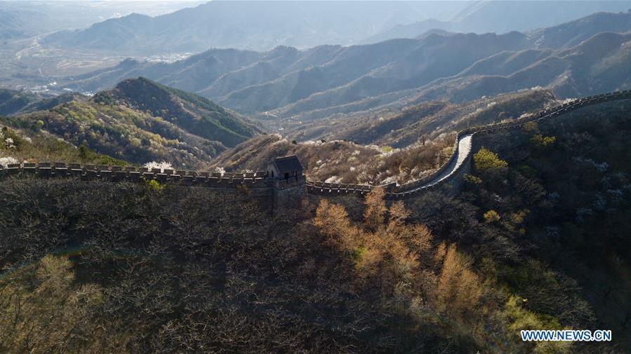 Photos aériennes de la section de Mutianyu de la Grande Muraille à Beijing