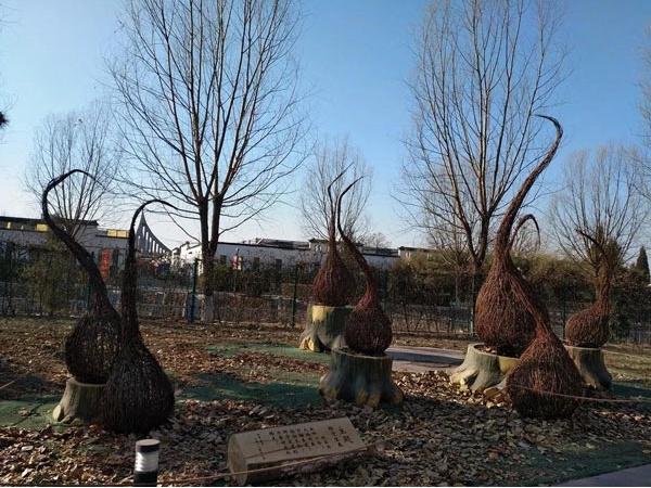 让你拍照拍到没内存!四季如春的大花园,又多了69个梦幻景点!