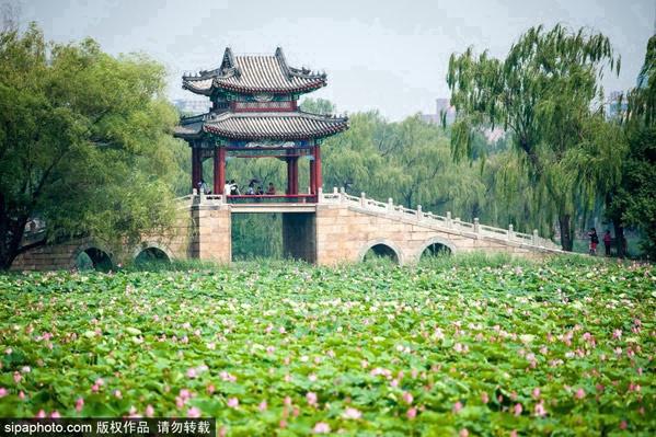 周末去哪玩,京城这些绿道你知道么?