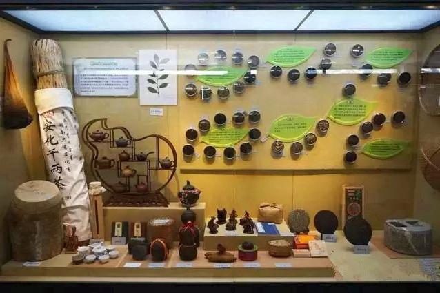 植物爱好者的狂欢,2018年的植物艺术全球联展全国仅设北京植物园一站