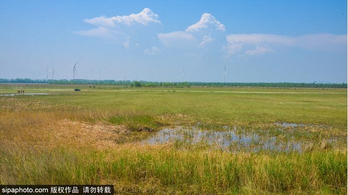 Самобытное очарование в пригороде Пекина -- Степь Канси