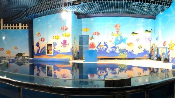 去海洋馆,看真正的海底世界