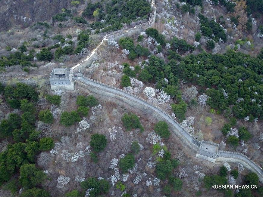Весенний пейзаж на участке Великой китайской стены Мутяньюй