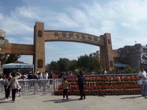 京津冀动物园大搜罗 动物世界真奇妙