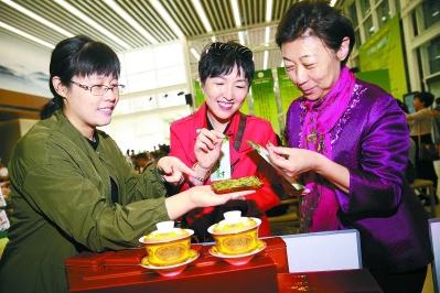 春茶节启动