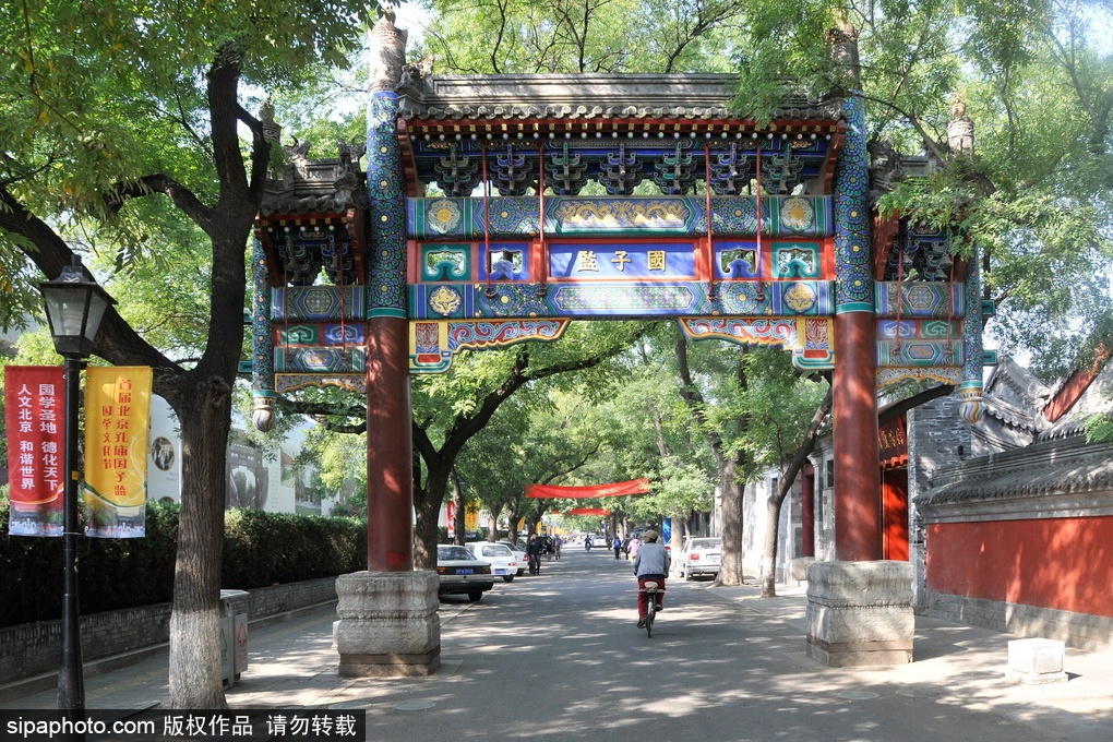 Une journée en tant que vieux Pékinois
