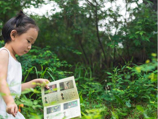 云峰山森林树屋,来一场浪漫的童话之旅