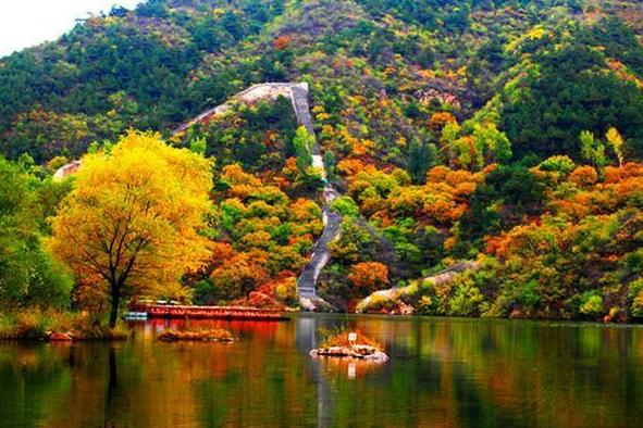 北京4A级红叶观赏景区,红云似海处处皆景
