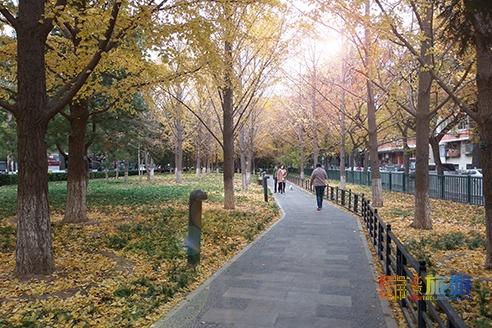 皇城根遗址公园:藏在闹市的美景