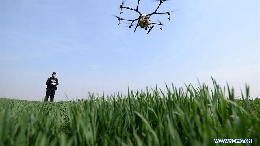 Farmers work in fields in Hebei