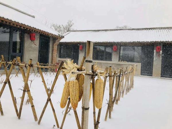雪景中的原乡里·三司:静谧温馨