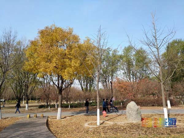 京郊南海子,秋日风景如此美