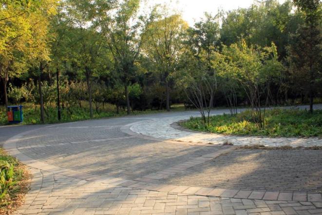 东坝郊野公园遛娃游记