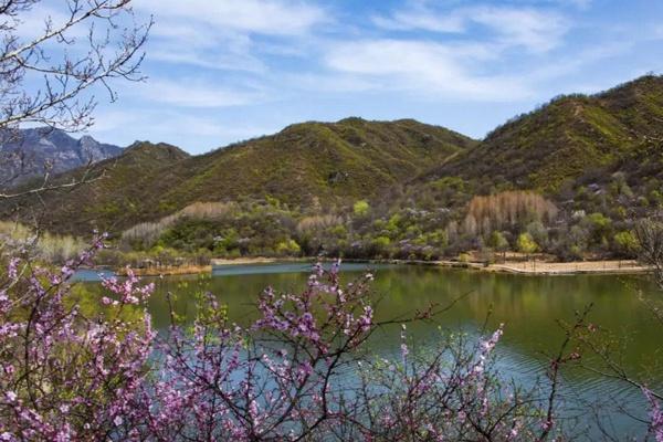 最美春天,来京郊看花赏景心情好