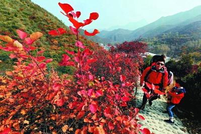 门头沟赏红叶