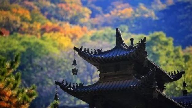 再见锦鲤,请收好这份北京8大寺庙礼佛指南!