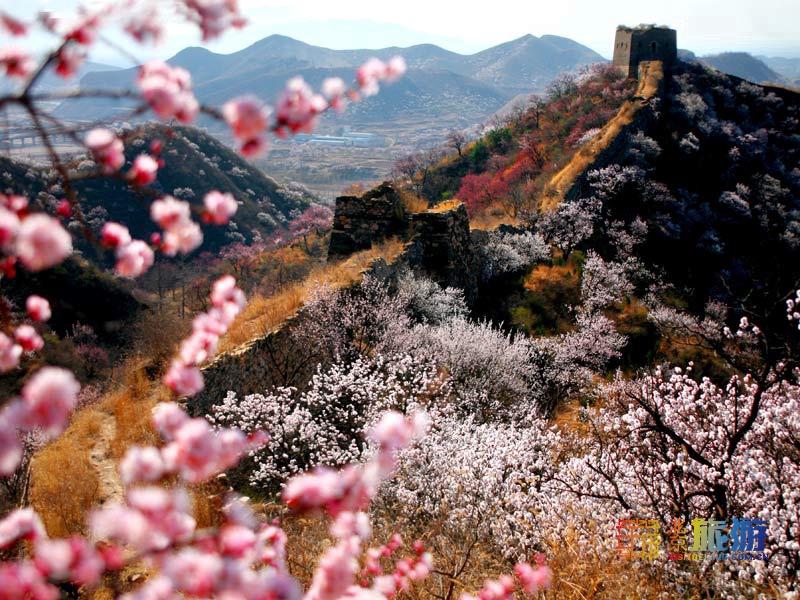 北京这个长城景区游玩最方便!看看是您想去的吗?还有美食!