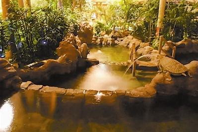 天津温泉推荐:这6个温泉度假地让您温暖一冬!