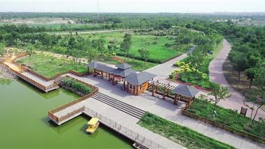 滨海新区打造生态宜居新城
