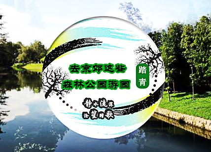 静水流深 沧笙踏歌 去京郊这些森林公园游园踏青
