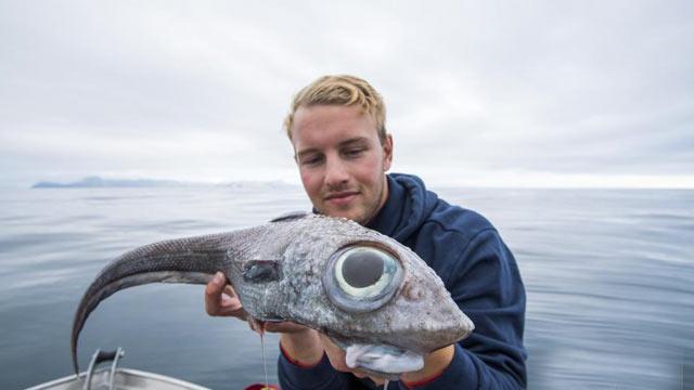 男子钓到深海怪鱼 长一双大眼十分吓人