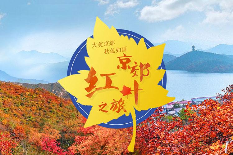 京郊紅葉之旅
