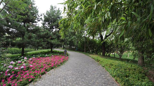 """寸土寸金的北京CBD中心,竟藏著一片""""綠野仙蹤"""",不去真的太可惜了"""