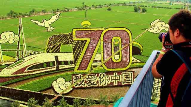 各地稻田画献礼新中国70周年