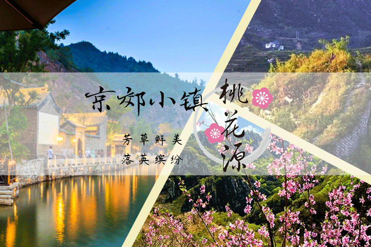 """芳草鲜美,落英缤纷 京郊小镇""""桃花源"""""""