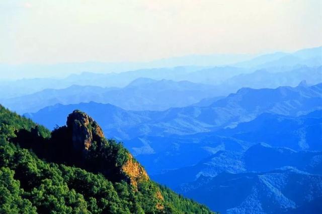 美爆朋友圈!河北这四处中国最美森林你去过吗?